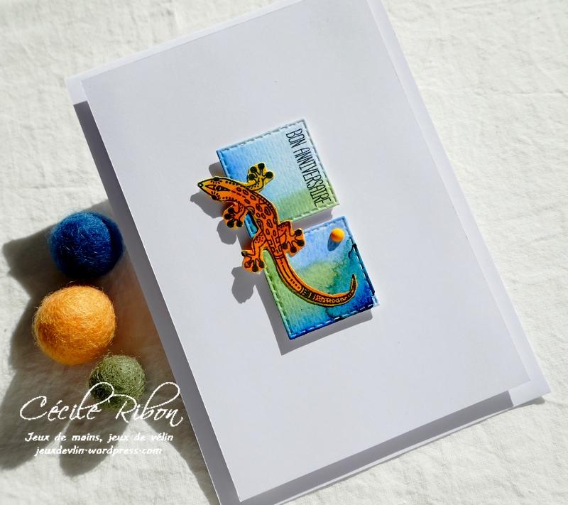 Carte CTD660 - P1260346