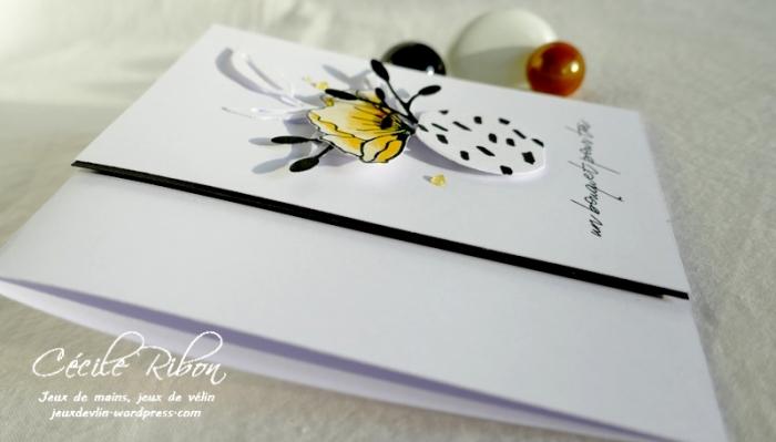 Carte PourToi05 - P1260728