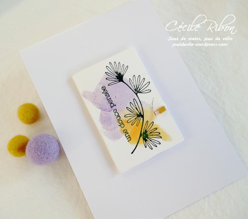 Carte LiM453 - P1270024