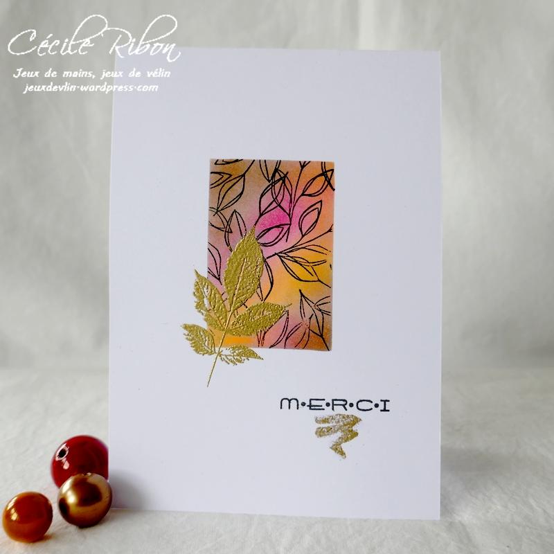 Carte LiM454 - P1270278