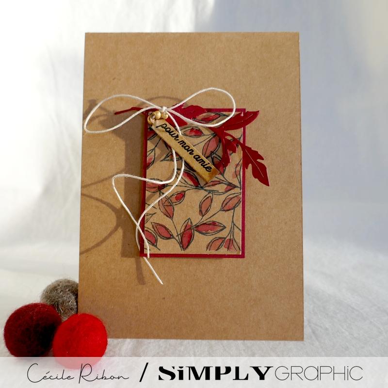 Carte SG06 - P1260745